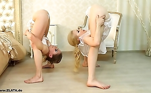Contortionists zlata added to tanya nearly periphery